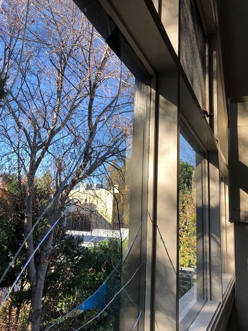 Inner West Window